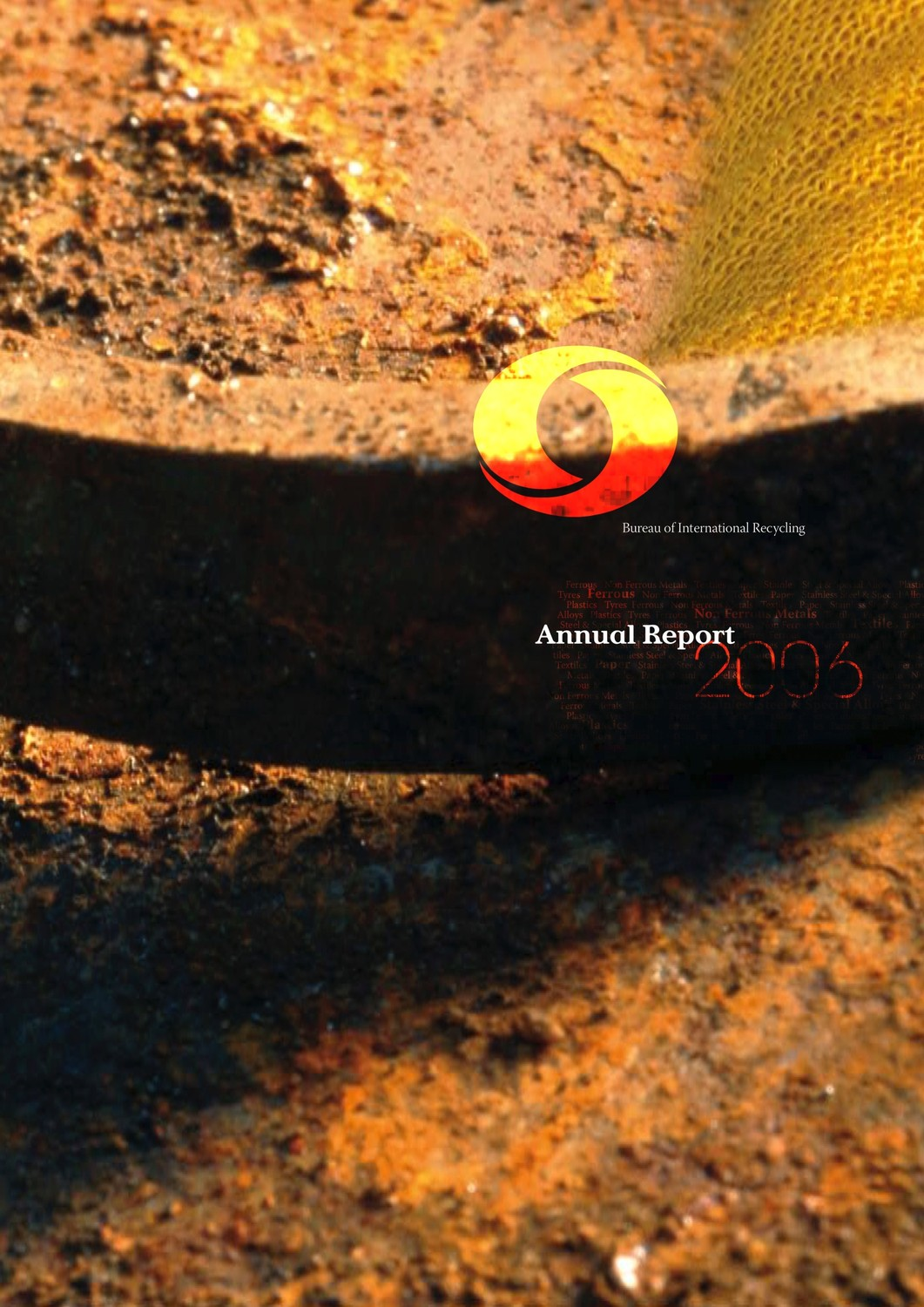 BIR Annual Report 2006